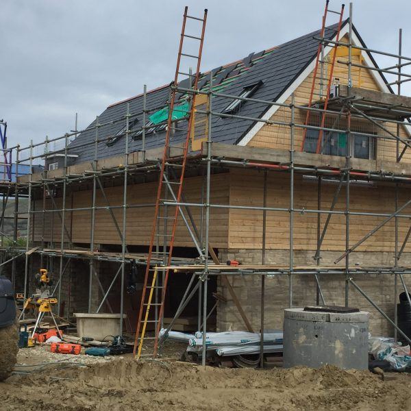 Carpenter in westbourne